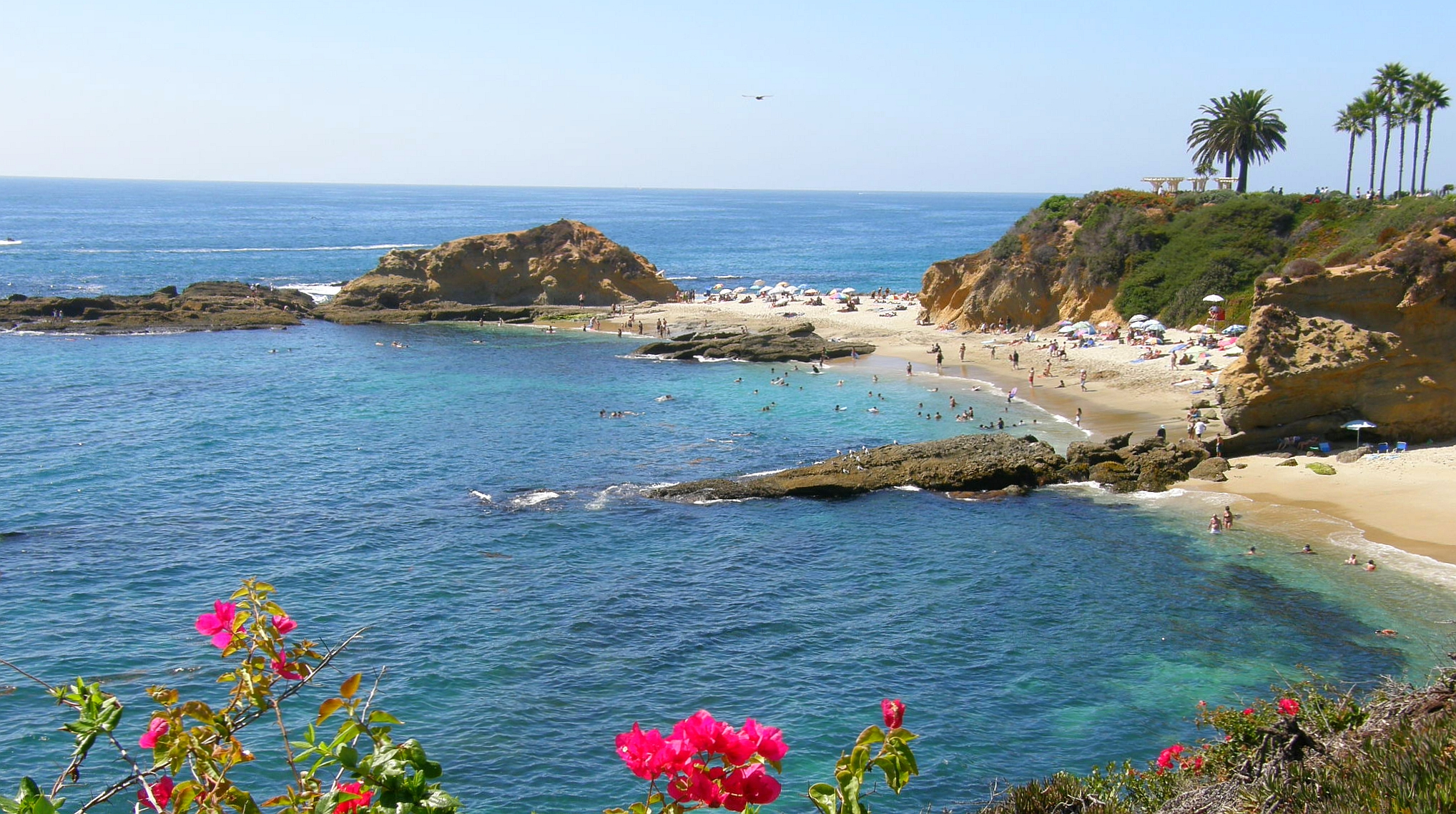 Top ten things to love about Laguna Beach in Springtime