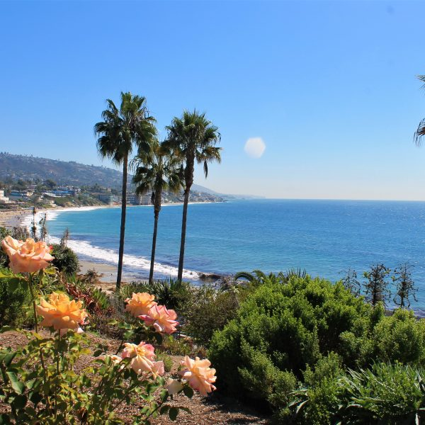 Laguna Beach Homes for Sale or Rent in North Laguna Village area